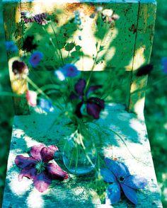 Flowers - Denise Grünstein - CAMERALINK