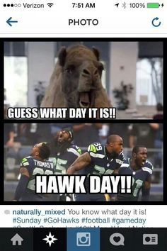 HAWKS DAY