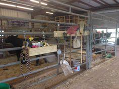 FFA barn heifer stall grooming box and tool hangar
