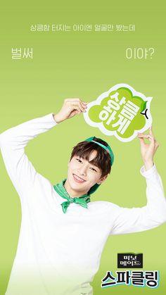 Stray Kids IN Jeongin Wallpaper Sung Lee, Ocean Video, Korean Boy, Wattpad, How To Stop Procrastinating, Just Friends, Lee Know, Lee Min Ho, Kpop Groups