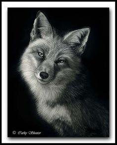 """Scratchboard Art of Cathy Sheeter - """"Foxy Lady"""""""