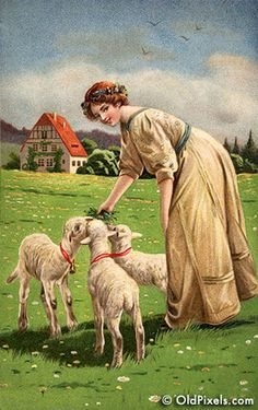 Woman feeding lambs on Easter - A Victorian illustration, circa 1913.