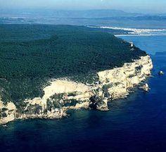 Parque Natural de La Breña, en Barbate (Cádiz): Acantilados, Pinar y Marismas
