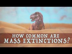 A Stop-Motion Animated Lesson About Mass Extinction Events and When The Next Could Occur