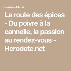 La route des épices - Du poivre à la cannelle, la passion au rendez-vous - Herodote.net