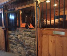 Amazing horse stable