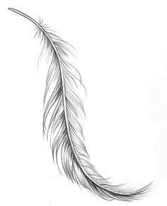 desenho de pena