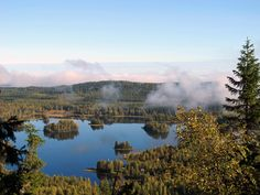 Koli National Park, Finland