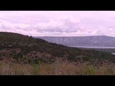 Jeśli Chorwacja to Adriatyk, a jeśli Adriatyk to Promy Jadrolinja https://www.youtube.com/watch?v=0-twOdVERK8 #chorwacja #adriatyk #jadrolinja