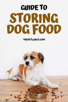 Dog food isn't the nicest smelling food, so when it's exposed to light and air it can become rancid very quickly. Because all dog foods have different expiry dates, ingredients and preservatives, the shelf life will vary from brand to brand. Check this guide for storing dog food. #dogfood #doghealth #dog #dogcare #dogfoodstorage