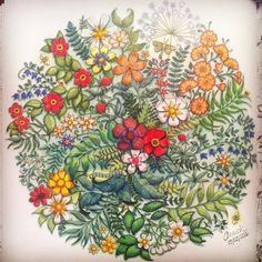 Image result for mandela from secret garden johanna