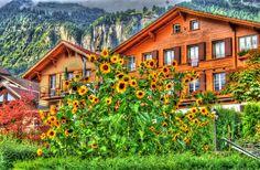 Photograph Brienz, Thun, Spiez, Switzerland by Kevin Shingleton on 500px