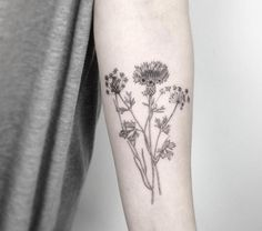 Blackwork Wildflowers by Jakub Nowicz