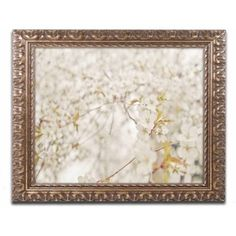 Trademark Fine Art 'White Cherry Blossoms' Canvas Art by Ariane Moshayedi, Gold Ornate Frame, Size: 11 x 14, Multicolor