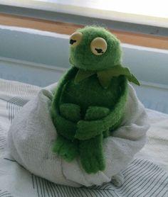 Memes Love Videos Kermit The Frog Funny Kermit Memes, Stupid Funny Memes, Meme Pictures, Reaction Pictures, Elmo, Sapo Kermit, Foto Cartoon, Les Muppets, Gavin Memes