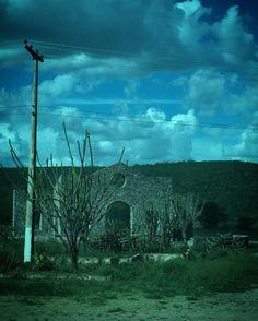 #Aracaju no meio do caminho
