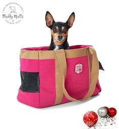Perth Dog Carry Bags - Muddy Mutts and Pocket Pups Dog Christmas Presents, Dog Carrier Bag, Dog Safety, Maltese Dogs, Carry On Bag, Dog Design, Dog Treats, Perth, Small Dogs