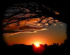 Find images and videos about beauty, sunset and tree on We Heart It - the app to get lost in what you love. Pictures To Paint, Cool Pictures, Collateral Beauty, Amazing Sunsets, Beautiful Sunset, Beautiful Places, Kenya, Wonders Of The World, Natural Beauty
