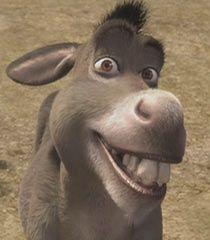 Images of the Donkey voice actors from the Shrek franchise. Burro Do Shrek, Shrek Donkey, Cute Wallpaper Backgrounds, Disney Wallpaper, Cute Wallpapers, Shrek Quotes, Donkey Images, Shrek Character, Donkey Drawing
