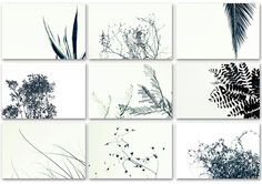 Nine Framable Photo Cards Set Black and White nature by DUEALBERI