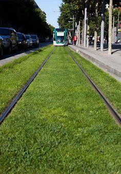 grass tram | Jesse Morgan