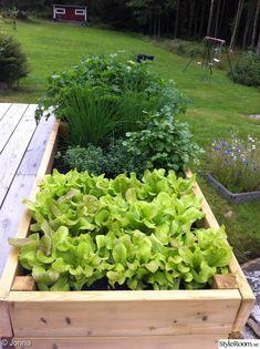Edible garden off the edge of your deck Flower Pots, Flowers, Edible Garden, Raised Garden Beds, Little Houses, Yard Landscaping, Garden Planning, Garden Inspiration, Vegetable Garden