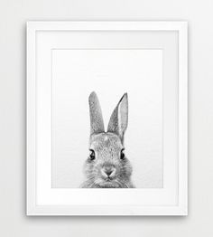 Rabbit Printable, Rabbit Photography Black And White, Bunny Print, Grey Wall Art, Woodland Animal, Modern Wall Art, Nursery, Digital Print