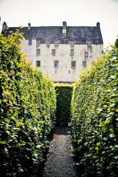 The maze at Traquair House, Innerleithen, Scotland, UK, Alex Barlow