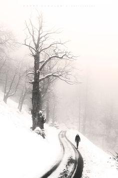 a winter's walk//