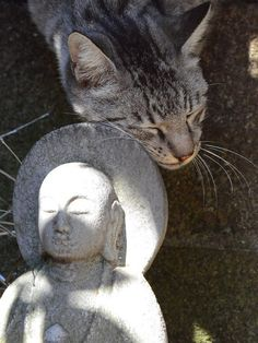 """I luvs you, Buddha.... <3"""