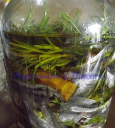 Acciughe Salate sott' olio