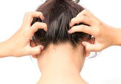 Chassez les poux de votre tête avec ce shampooing anti-poux 100% naturel !noté 3.8 - 16 votes Ne vous laissez pas envahir par les poux! Si nous aimons les odeurs de la lavande et de l'arbre à thé, il semblerait que ce ne soit pas le cas des poux… Profitons donc de cette faiblesse pour … More