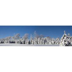 Canadian Winter Panorama Foster Quebec Canada Canvas Art - David Chapman Design Pics (40 x 11)