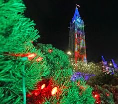 Christmas Lights Across Canada Illumination Ceremony. The Christmas Lights Across Canada Illumination Ceremony took place on Wednesday, December 3, featuring a Peace Tower carillon concert and fireworks. Throughout Christmas Lights Across Canada, the lights in Ottawa–Gatineau will glow each evening from 4:30 p.m. to 2 a.m. until early January. http://ottawacitizen.com/news/local-news/photos-christmas-lights-across-canada-illumination-ceremony #JeromePhotographer #ottawa #christmasphotos
