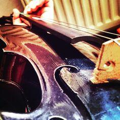 Colorful ♥ i love my violin