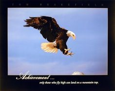 Liven up any room with this wonderful Bald eagle art print poster. This poster captures the image of a Bald Eagle diving landing achievement is sure to make this poster eye catchy and grab lot of attention. The high quality printing gives this blooming art print poster, vivid and sharp appearance with a high degree of color accuracy creates an elegant look and always stands on test of time.