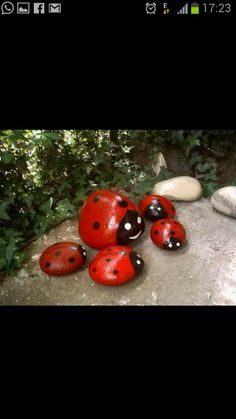Ladybug roks for garden decor...Mel, I know you can make me some of these!..;)