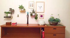 Decoração com plantinhas e uma cuba recheada de vida esperando por você! Vai ficar incrível na sua casa!  #oitominhocas #suculentas #suculovers #decoração #plantinhas #maisverde #casalinda #cubadeceramica #ceramica