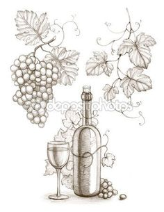 wine bottles, wine, grapes, grape leaves drawings - Google Search