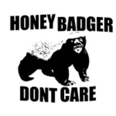 Get the Honey Badger Don't Care Funny Shirt funny shirt at Better Than Pants!