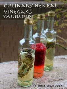 Your new go-to blueprint for homemade herbal culinary vinegars – Fresh Bites Daily Flavored Oils, Infused Oils, How To Make Vinegar, Herbal Oil, Herbal Extracts, Pesto, Canning Recipes, Apple Cider Vinegar, Herbalism