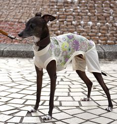Italian Greyhound Clothes    Liberty Print Linen Coverall