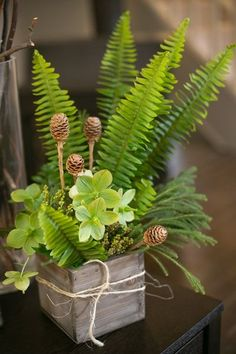 Ferns and leaves in wooden box. Woodland Themed Baby Shower centrepiece. Woodland themed decoration