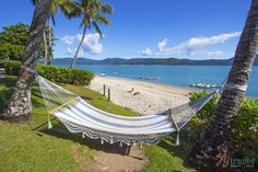 Beautiful photo captured on Daydream Island by Caz and Craig Makepeace from Ytravelblog <3  Daydream Island, Queensland, Australia