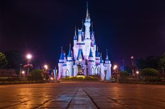Planning your 2017 Walt Disney World trip can be intimidating for first-time visitors. This guide provides free tips & tricks to save money and time, a