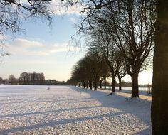 Wintery sunrise. Eaton Park. About 8.45am.
