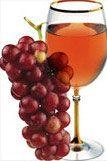 Enoteca online La Cantina Pinta: acquista ora vini, cognac e whisky delle migliori marche