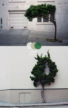 MOODS: Green concrete on thisispaper.com