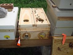 Mating nuc for rearing honey bee queens