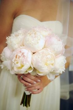 Love these pion-roses! In fears orange or pink purple!